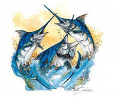 Sea Horse Anglers Club Billfish Tournament